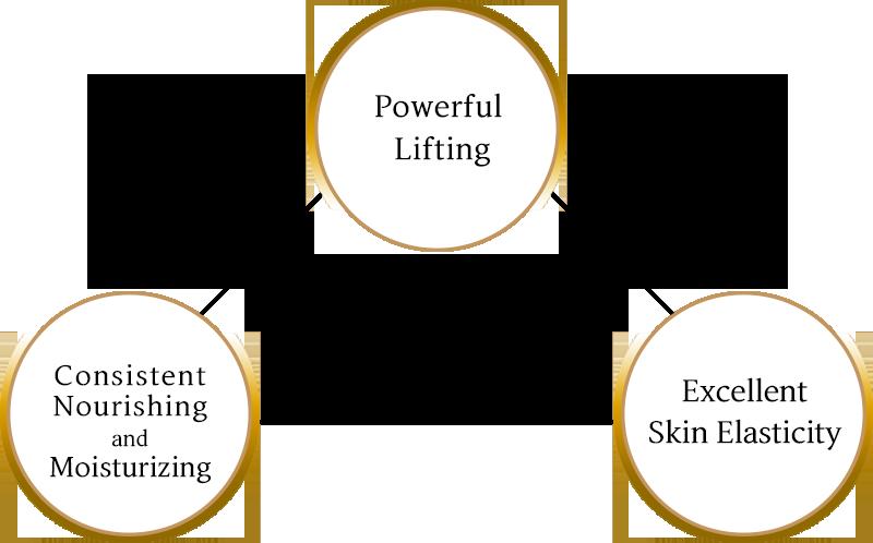 강력한 리프팅, 지속적인 영양 보습, 탁월한 피부 탄력